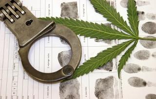 Beim Konsum von Cannabis kann der Führerschein durchaus entzogen werden.
