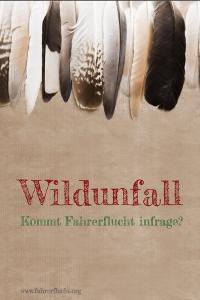 "Ratgeber zum Thema ""Wildunfall"""